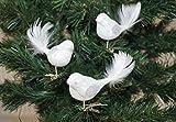 3 tlg. Glas Vogel Set in 'Hochglanz-Weiss-Silber' - Neuheit - Christbaumkugeln - Weihnachtsschmuck-Christbaumschmuck