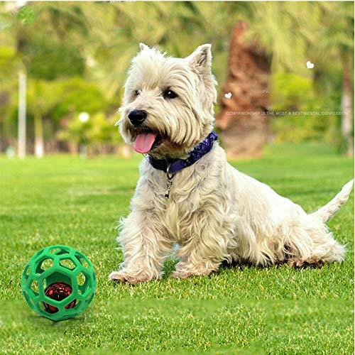 Stock Show Haustier Hund Spielzeug Tennis Ball mit Blue Hollow TPR Äußere Zähne Reinigung Playtoy für Katze (1 * zufällig)