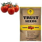 #3: TrustBasket Tomato round Vegetable Seeds (GMO Free)
