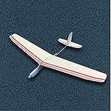 klkll Maquette en Bois Kits de modèle d'avion à Jet de Main Bricolage Jouets d'extérieur modèle d'avion Jouets Matériel d'enseignement de Classe Manuelle