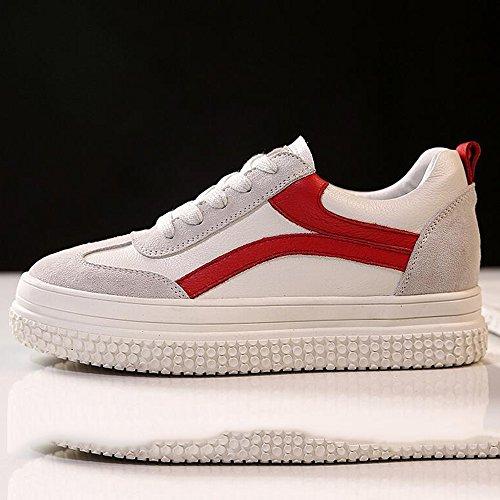 Haizhen Cheville Bottes Sneakers Sneakers Pour Les Chaussures De Femmes Chaussures De Marche Pour Spring Walk Casual Outdoor Lace-up Platform Pour 18-40 Ans Pour 18-40 Ans Noir