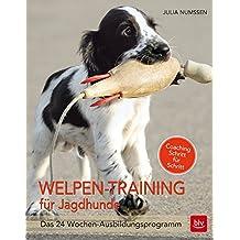Welpen-Training für Jagdhunde: Das 24-Wochen Ausbildungsprogramm