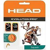 Head Evolution Pro Squash String 17L (Orange)