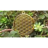 Fiore di vita geometria sacro fiore della vita Mandala raccolto cerchio vintage civiltà antichi misteri archeologia arte Egitto Atlantida piramidi Drunvalo ciondolo