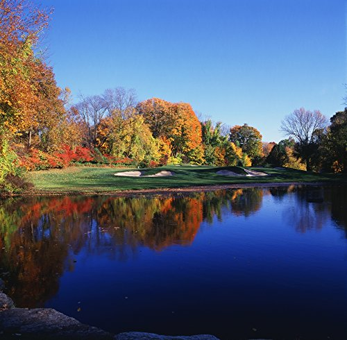 Panoramic Images – Trees in a Golf Course Patterson Club Fairfield Connecticut USA Photo Print (30,48 x 30,48 cm)