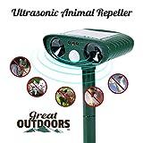 Répulsif à ultrasons pour animaux et répulsif solaire imperméable à l'eau contre...