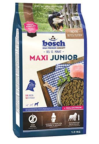 Bosch Maxi Junior Nourriture pour Chien, 1kg
