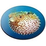 Stuoia rotonda del mouse - regalo dell'ufficio di immersione subacquea dell'oceano del pesce del pesce palla