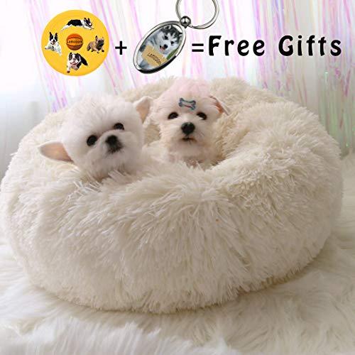Lamzoom Cama Mascotas Deluxe Gatos Perros Pequeños