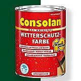 Consolan Wetterschutz-Farbe (2,5 l, moosgruen)