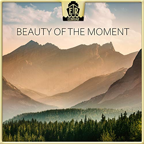 Beauty of the Moment -