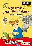 Duden Leseprofi ? Mein großes Lese-Übungsbuch für die 1. Klasse: Mit 100 spannenden Leserätseln (DUDEN Leseprofi 1. Klasse) - Luise Holthausen