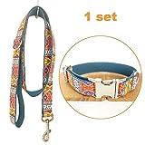 TVMALL Hund Set Halsband verstellbar Outdoor Pet Leine Seil Set Halsband Bohemian-Stil Hundehalsband für mittelgroße und Kleine Hunde(Böhmisches Cyan,S)