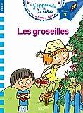 Sami et Julie CP Niveau 3 Les Groseilles...