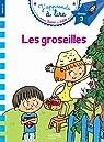 Sami et Julie CP Niveau 3 Les Groseilles par Massonaud
