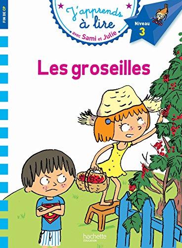 Sami et Julie CP Niveau 3 Les Groseilles par Emmanuelle Massonaud