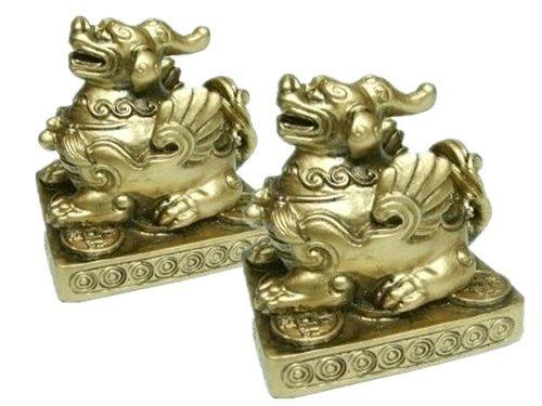 Ufficio Feng Shui Usa : Yao yao le meilleur prix dans amazon savemoney.es