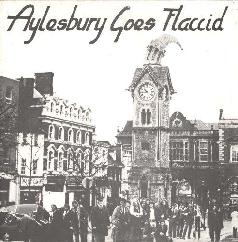 aylesbury-goes-flaccid-sampler-verschiedene-interpreten