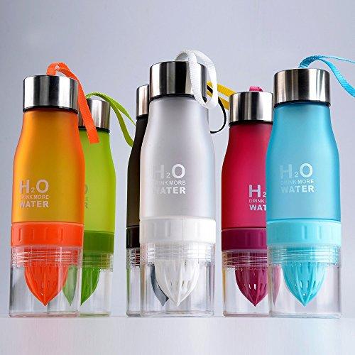 H2O Fruit-Ei 650ml Wasser Flasche–Create Your Own natürlich Geschmack Fruit infundiert Wasser, Saft, Eistee & Limonade für auf der Go Hydration rose