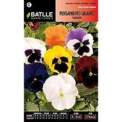 Semillas Batlle 095905BOLS - Pensamiento Gigante variado