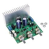 F Fityle TDA7265 Basslautsprecher Endstufe Audio Verstärkerplatine Audio Stereo Verstärkermodul 40W + 40W