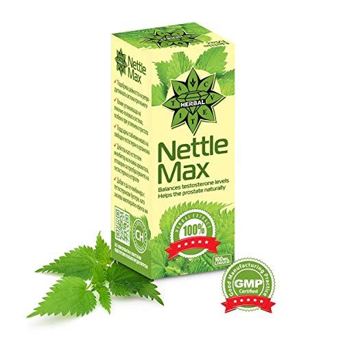 Cvetita Herbal, Nettle, Nessel Max Natürlicher Nesselwurzel Flüssiger Kräuterextrakt, Potentes Antioxidans und erhöht Testosteron, Fördert Prostata Health & Harnsäureausscheidung (1) -