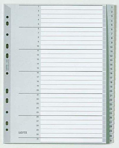 Preisvergleich Produktbild Leitz 12810000 Plastikregister 1-31, A4, PP, 31 Blatt, grau