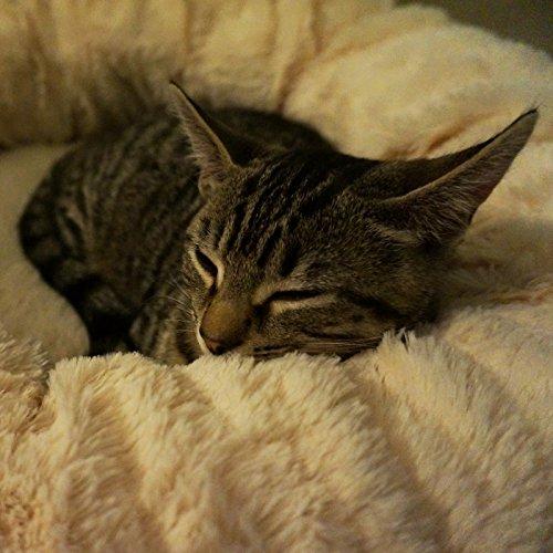 """Me & My Pets Herrlich weiches Haustierbett """"Donut"""" für Katzen, Welpen und kleine Hunde - 4"""