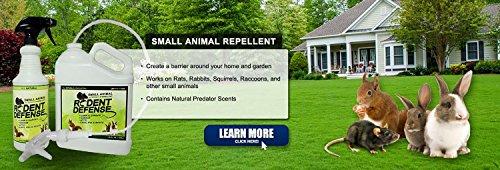 rongeur-defense-petit-animal-tout-effet-dissuasif-naturel-et-repulsif-09l-spray-pour-les-ecureuils-l