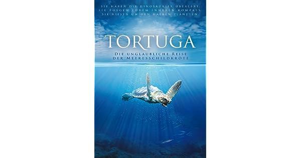 Amazon.de: TORTUGA - Die unglaubliche Reise der Meeresschildkröte ...