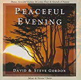 Songtexte von David and Steve Gordon - Peaceful Evening