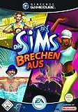 Die Sims brechen aus -