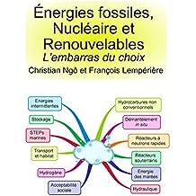 Énergies fossiles, Nucléaire et Renouvelables : L'embarras du choix