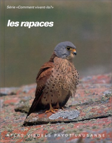 Les rapaces : Faucons, buse variable, épervier d'Europe et autres rapaces diurnes.