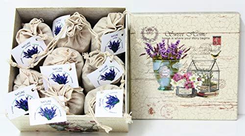 Direct Global Lavendelsäckchen 8 x 20 Gramm, Lavendelbeutel + dekorative Box, Zum Entspannen und Dekorieren des Hauses, Lavendelblüten