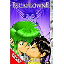 Vision Of Escaflowne, The Volume 7: v. 7 by AKI, KATSU (2005) Paperback