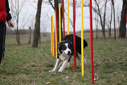 AGILITY-ÜBUNGS-SLALOM-SET ROT/GELB FLEXIBLE,RUNDE STANGEN, PRIME DAY-ANGEBOT