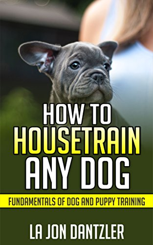 How to House Train Any Dog: Fundamentals Of Dog and Puppy Training (DT) (English Edition) -