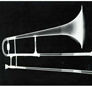Gianluca Petrella in concerto