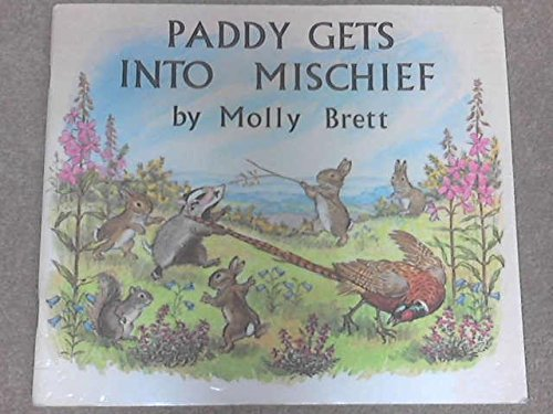 paddy-gets-into-mischief-medici-books-for-children