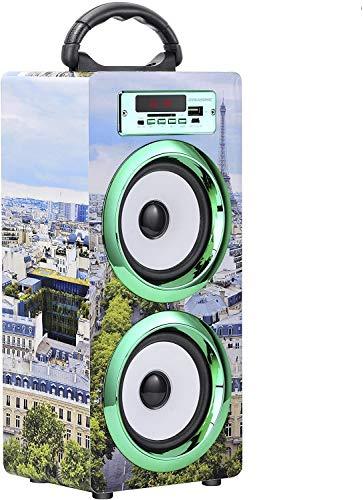 Oferta de DYNASONIC - Altavoz Bluetooth Portatil 10W | Reproductor mp3 Inalámbrico Portátil, Lector USB SD, Radio FM - Modelo 020-5