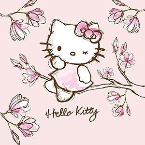 Nintendo DS Case Skin Sticker aus Vinyl-Folie Aufkleber Hello Kitty Merchandise Fanartikel Magnolia