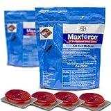 4 MAXFORCE ESTACIONES ADHESIVAS CEBO PROFESIONAL INTERIORES EXTERIORES ELIMINAR CUCARACHAS ORIGINAL...