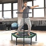 ISE Fitness Trampolin für das Haus, den Garten oder den Fitnessraum mit verstellbarer Haltestange – Schwarz und grün - SY-1105-GR