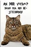 +++ SIBIRISCHE WALDKATZE Katze - METALL WARNSCHILD SCHILD KATZENSCHILD SIGN - SIB 04