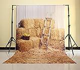 NIVIUS PHOTO® 150*220CM Haystack Rock und Holz-Stall Fotografie Newborn Kulisse Hintergrund neugeborene Tapete Boden D-6160