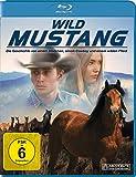 Wild Mustang kostenlos online stream