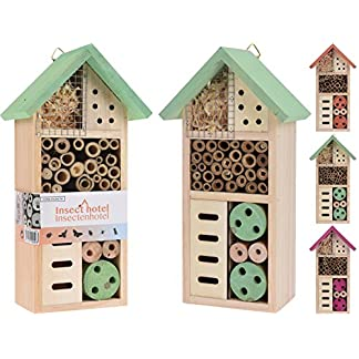 Elyte Retail Insect Bee Bug Wildlife House Hotel Available in 2 Funky colours - Funky Green and Funky Pink Elyte Retail Insect Bee Bug Wildlife House Hotel Available in 2 Funky colours – Funky Green and Funky Pink (Funky Orange) 51C6cOiQRGL