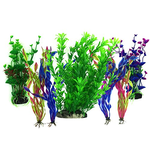 Aquarium Plants, Aquarium Fish Tanks UK