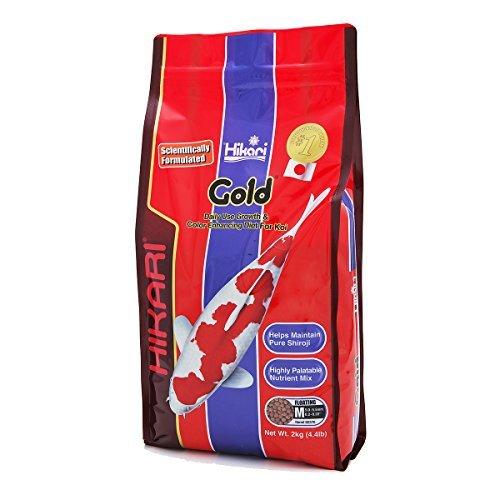 Hikari Fischfutter Gold Medium 2 kg, 1er Pack (1 x 2 kg)